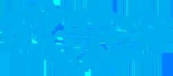 skype-250w